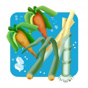 34.sugarcane