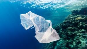 Περισσότερα πλαστικά από ότι ψάρια