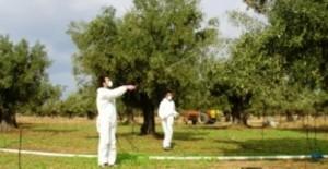 Monsanto: Ο γίγαντας της Επικινδυνότητας